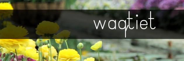 Waqtiet: Programmi speċjali għar-Randan 2014